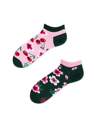Many Mornings Cherry Blossom Socks